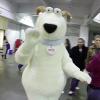 #Vlomo11 Day 13, Dog Show